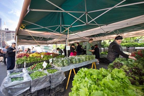 שוק איכרים כמנוע כלכלי והדוגמא של אמיר יקותיאל