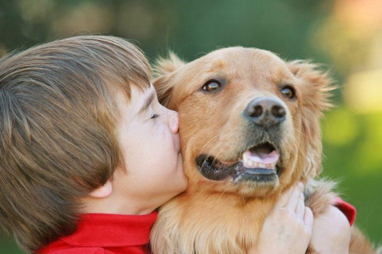 איך בעל חיים בבית תורם להתפתחות הילד